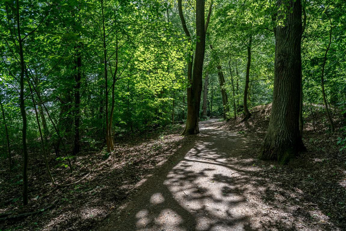 Die Parks und Grünanlagen von Treptow-Köpenick im Überblick
