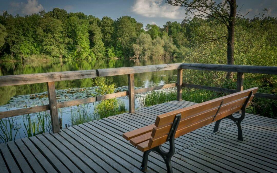 Die schönsten Picknickplätze im Berliner Bezirk Treptow-Köpenick